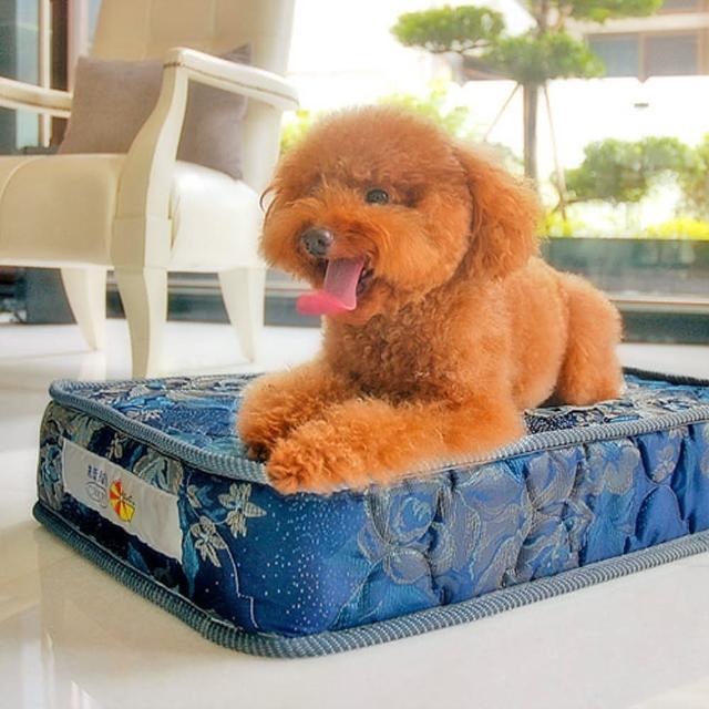 【凱蕾絲帝】寵物專用獨立筒彈簧床墊(中-45*60*11cm)