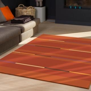 ~范登伯格~卡洛琳~簡單 地毯~半月 160x230cm
