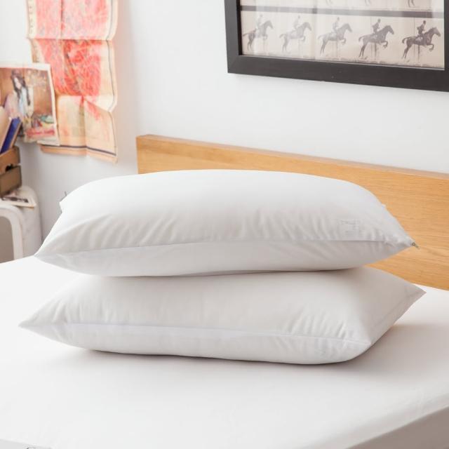 【LAMINA】高科技膜防蹣防枕用保潔墊-2入