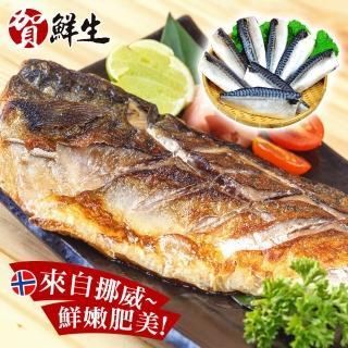 ~賀鮮生~超厚片挪威薄鹽鯖魚12片 190g 片