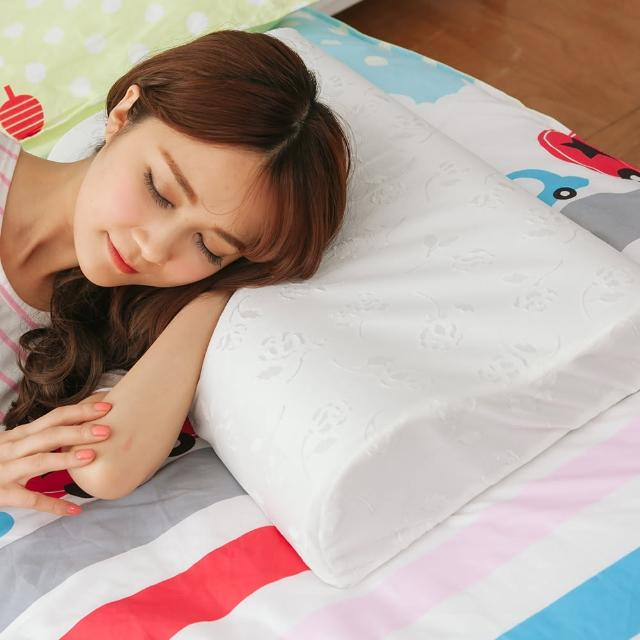 【eyah】奈米銀觸媒竹炭記憶枕(L大枕)