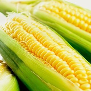 【鮮採家】超甜黃玉米3台斤1箱(約6-10支)