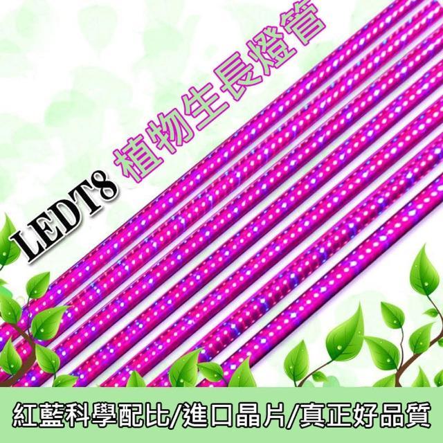 【光的魔法師 Magic Light】三入裝 LED植物燈 20W 園藝育苗燈(蔬菜燈 4呎 120公分)