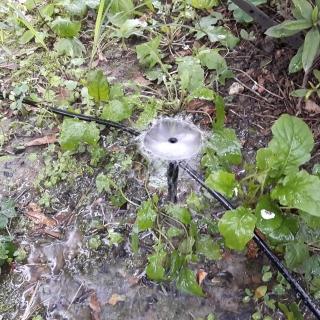 【灑水達人】2分中段串聯可調圓型滴頭插針100個