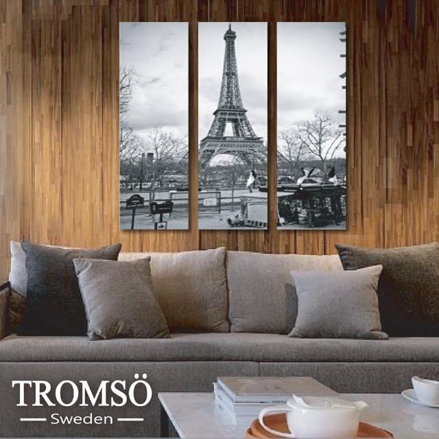 【TROMSO】時尚無框畫(巴黎風情)