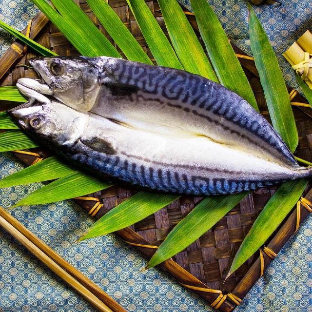 【買一送一 好神】嚴選挪威鯖魚一夜干10尾組(300g/尾 共20尾)