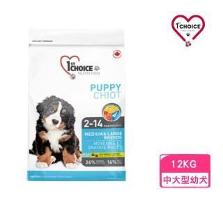 【1stChoice 瑪丁】第一優鮮犬糧《中大型幼犬-雞肉配方》15kg(贈 外出飼料包*2)