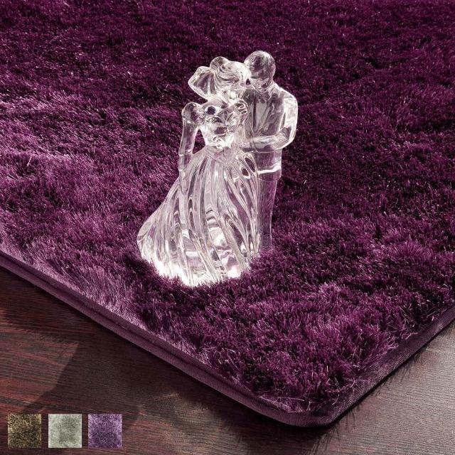 【范登伯格】潔光 細紗亮澤立體長毛地毯-共三色(100x140cm)
