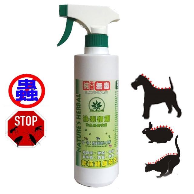 【百翠氏】SGS認證 天然超強效驅蟲防蚊液-綠素精靈500cc家庭號大瓶裝