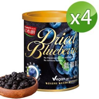 【紅布朗】藍莓乾(150g/罐)*4入