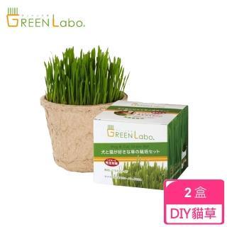 【GreenLabo】DIY貓咪燕麥草(2盒)