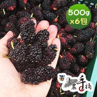 【老農手摘】天然野生桑葚果-產地直銷(500公克x6包)