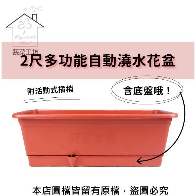 【蔬菜工坊005-AP60】2尺多功能自動澆水花盆(含底盤)