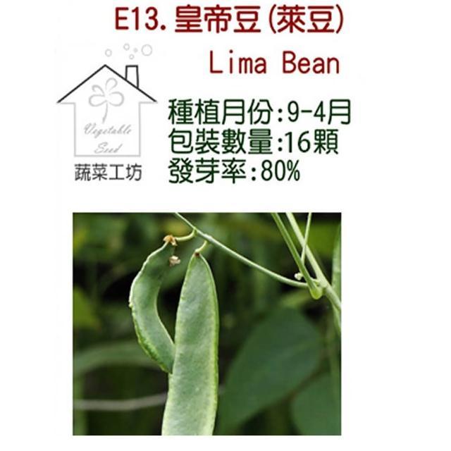 【蔬菜工坊】E13.皇帝豆種子(萊豆)