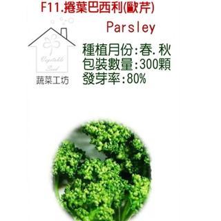 【蔬菜工坊】F11.捲葉巴西利種子(西洋香菜、歐芹)