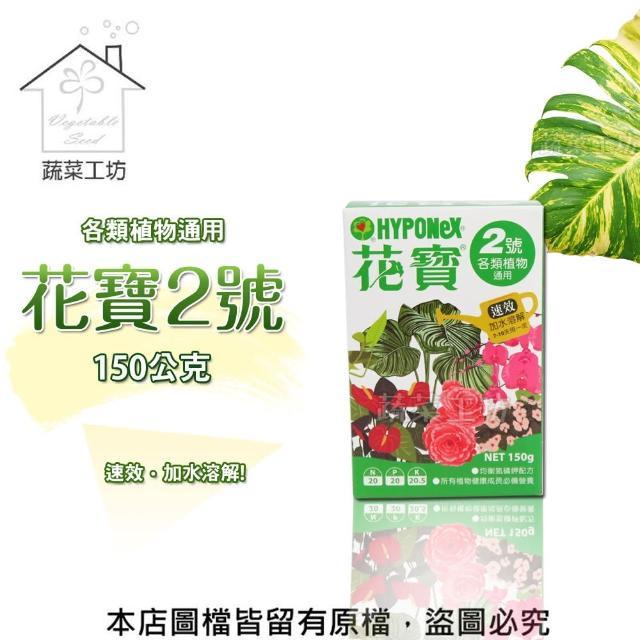 【蔬菜工坊002-B17】花寶2號150公克