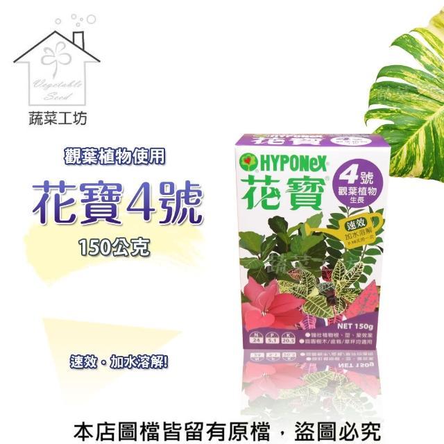【蔬菜工坊002-B19】花寶4號150公克