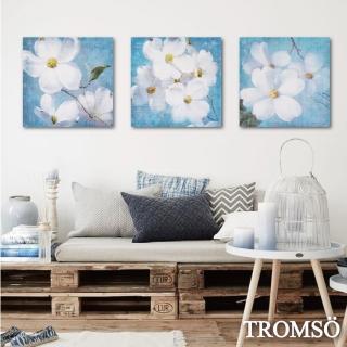 【TROMSO】時尚無框畫/淨藍花羽(三幅一組無框畫40X40CM)