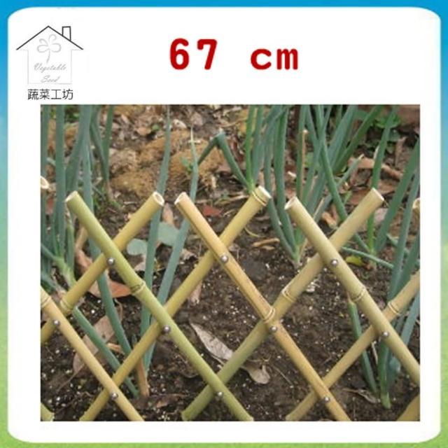 【蔬菜工坊011-A13】伸縮竹籬笆67公分(可任意伸長)