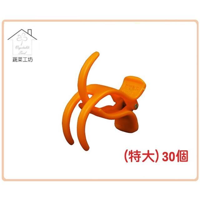 【蔬菜工坊009-C65】橘色嫁接夾-特大-30入/組