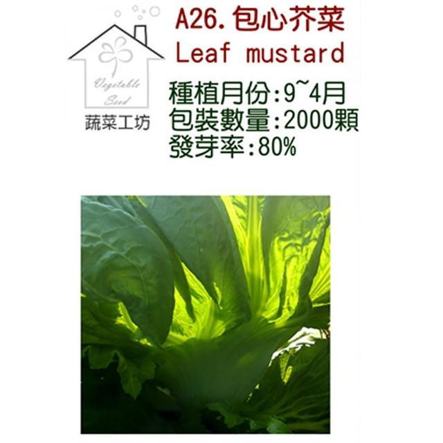 【蔬菜工坊】A26.包心芥菜種子(長年菜)