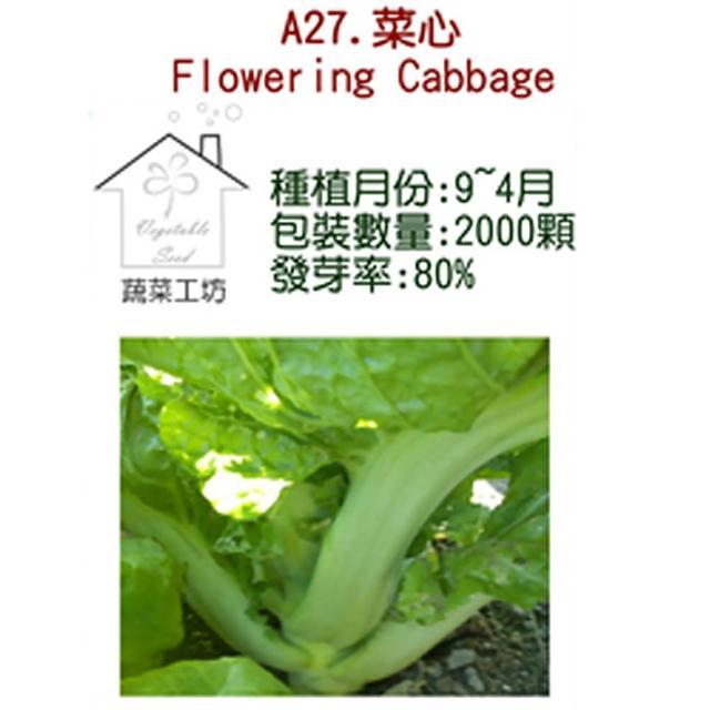 【蔬菜工坊】A27.菜心種子(大心芥菜)