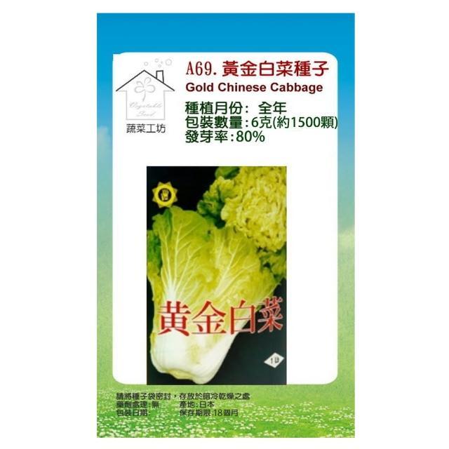【蔬菜工坊】A69.黃金白菜種子