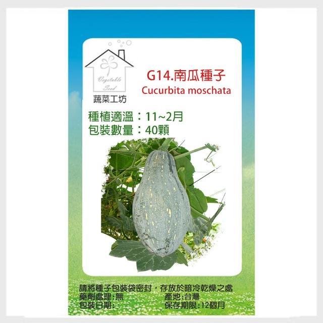 【蔬菜工坊】G14.南瓜種子(木瓜型金瓜)