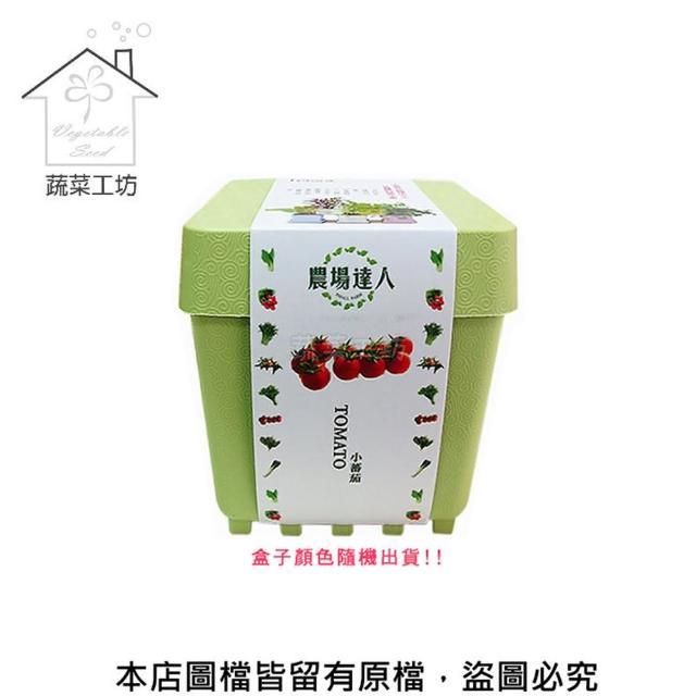 【蔬菜工坊004-D10】iPlant小農場系列-小番茄