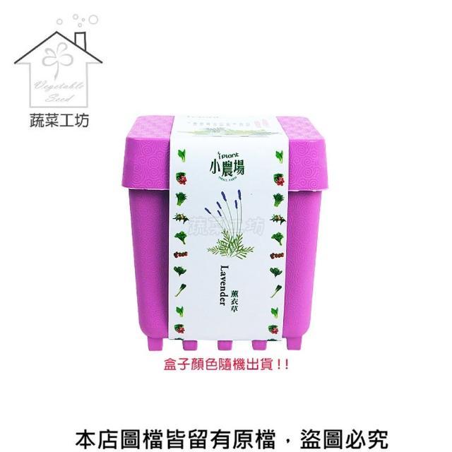 【蔬菜工坊004-D11】iPlant小農場系列-薰衣草