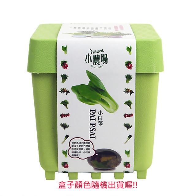 【蔬菜工坊004-D14】iPlant小農場系列-小白菜