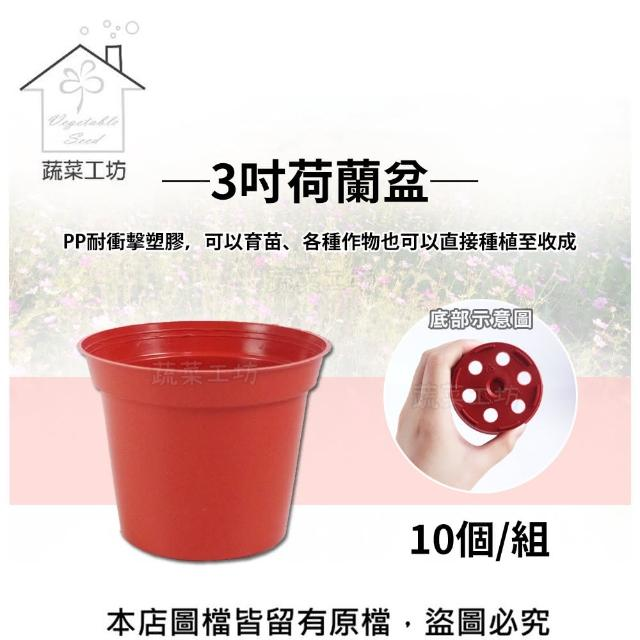 【蔬菜工坊005-C38】3吋荷蘭盆10個/組(栽培盆)