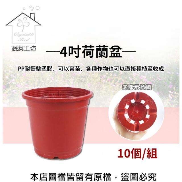 【蔬菜工坊005-C59】4吋荷蘭盆10個/組(栽培盆)