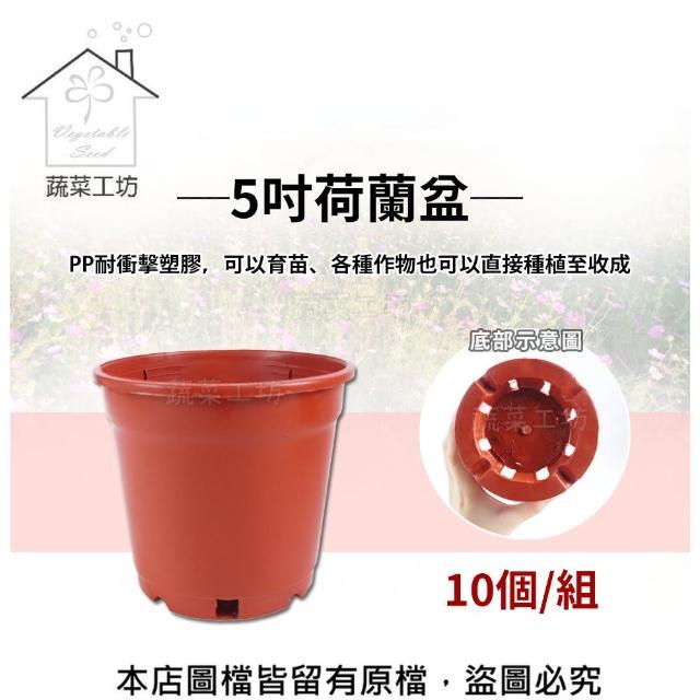 【蔬菜工坊005-C60】5吋荷蘭盆10個/組(栽培盆)
