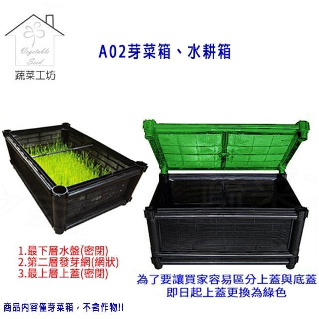 【蔬菜工坊005-A30】A02芽菜箱、水耕箱、家庭式多用途芽菜培育箱(D01*1組 發芽網*1 上蓋*1)