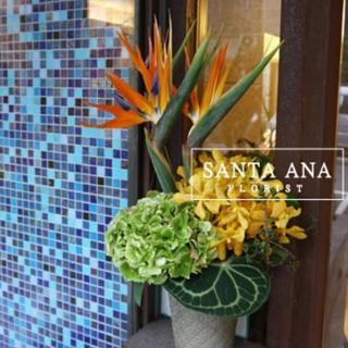 【Santa Ana】昂首闊步盆花組合(新鮮花材與高級盆器的組合)