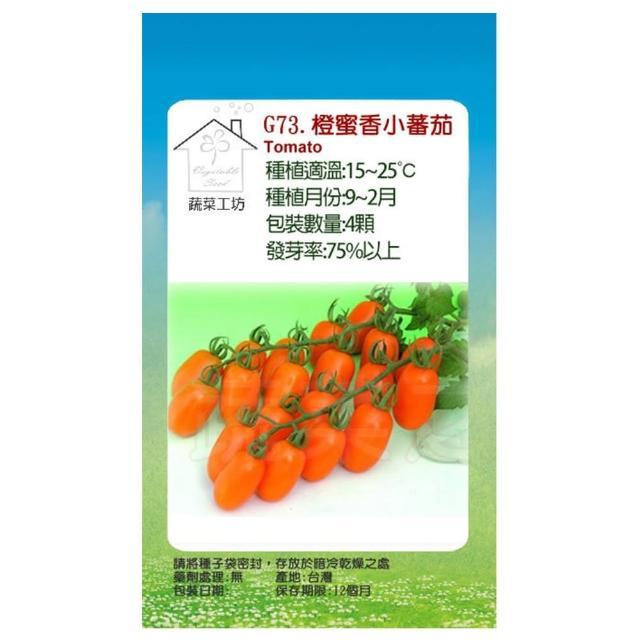 【蔬菜工坊】G73.橙蜜香小蕃茄種子