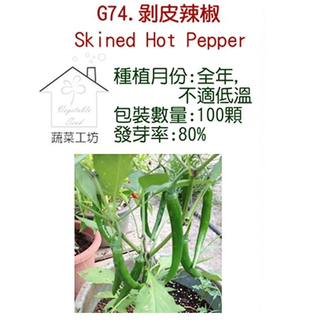 【蔬菜工坊】G74.剝皮辣椒種子