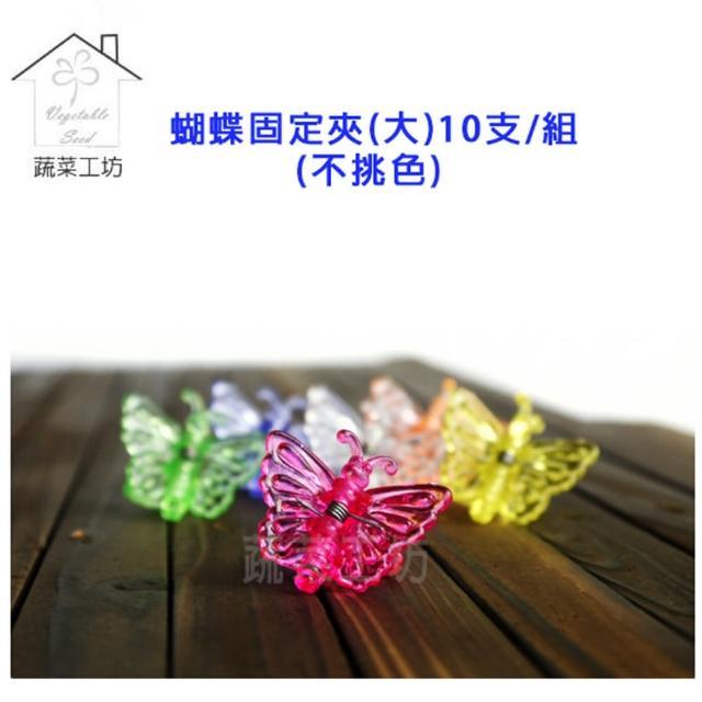 【蔬菜工坊011-A32】蝴蝶固定夾-大-10支/組(不挑色)