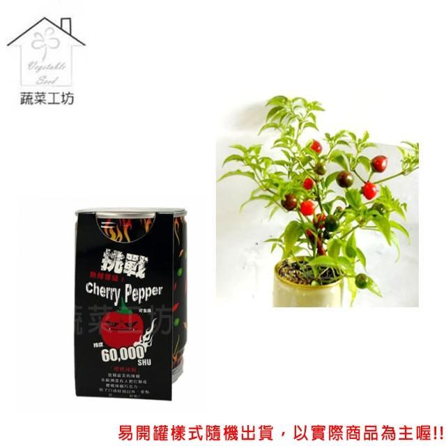 【蔬菜工坊004-E17】iPlant易開罐花卉-櫻桃辣椒