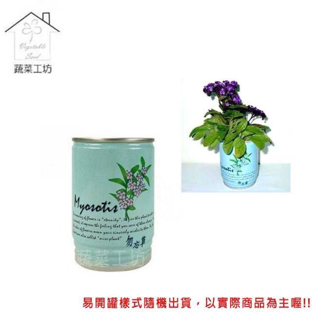 【蔬菜工坊004-E23】iPlant易開罐花卉-勿忘草