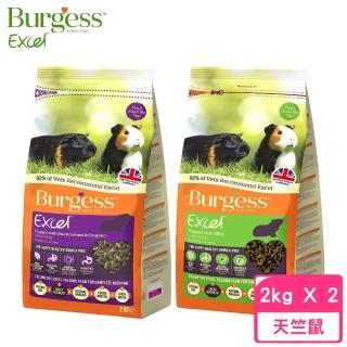 【Burgess伯爵】高機能鼠飼料《天竺鼠-黑莓&奧勒岡葉》2KG(2包組)