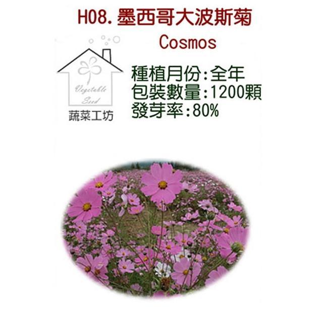【蔬菜工坊】H08.墨西哥大波斯菊種子(顏色綜合)