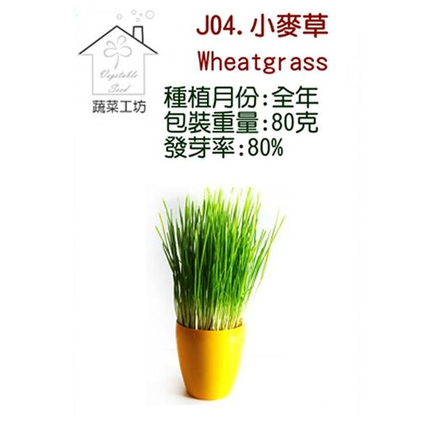 【蔬菜工坊】J04.小麥草種子(芽菜種子)
