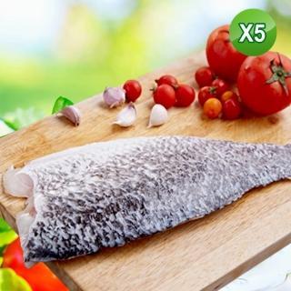 【賣魚的家】極鮮金目鱸魚切片5片組(220G/片)
