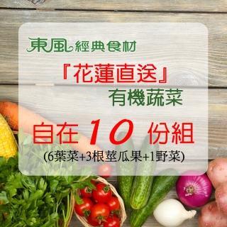 【東風經典食材】花蓮直送有機蔬菜/10份(有機蔬菜)
