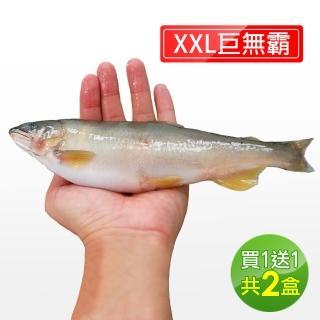 【直播限時搶X買一送一】宜蘭特選巨無霸XXL爆卵香魚1盒(920g/盒-再加碼1盒.共2盒)