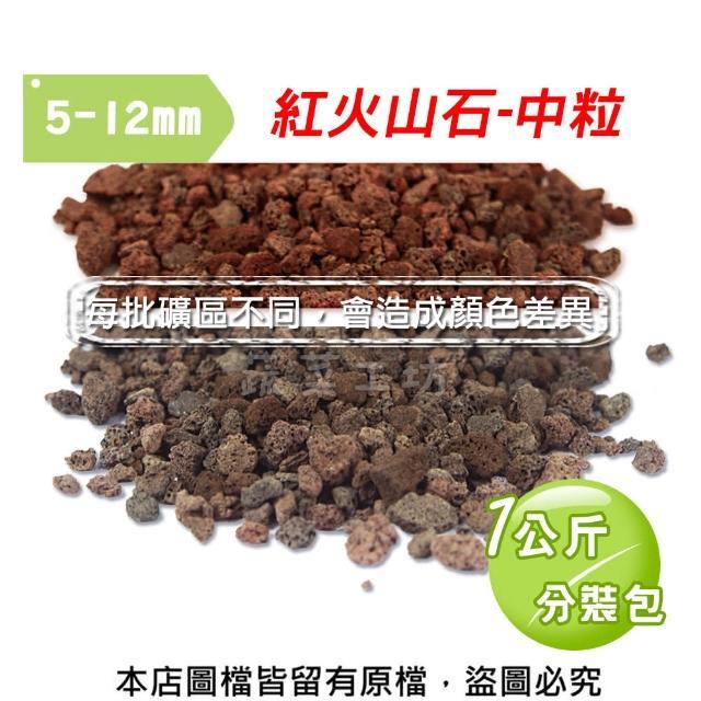 【蔬菜工坊】紅色火山石-中粒1公斤分裝包(8-10)