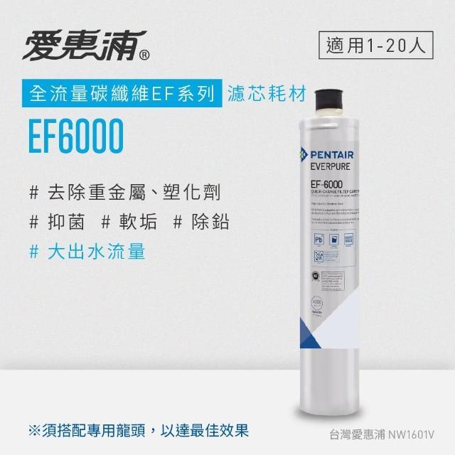 【EVERPURE 愛惠浦】EF6000淨水濾芯(EF6000 CART)