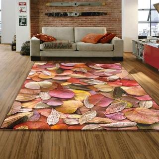 【范登伯格】專業3D印染絲質地毯-葉子(115x170cm)